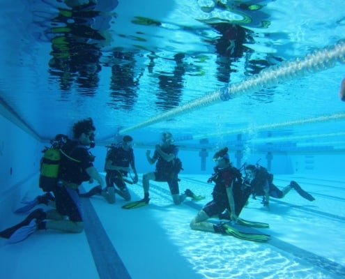 try dive with ocean trek tenerife