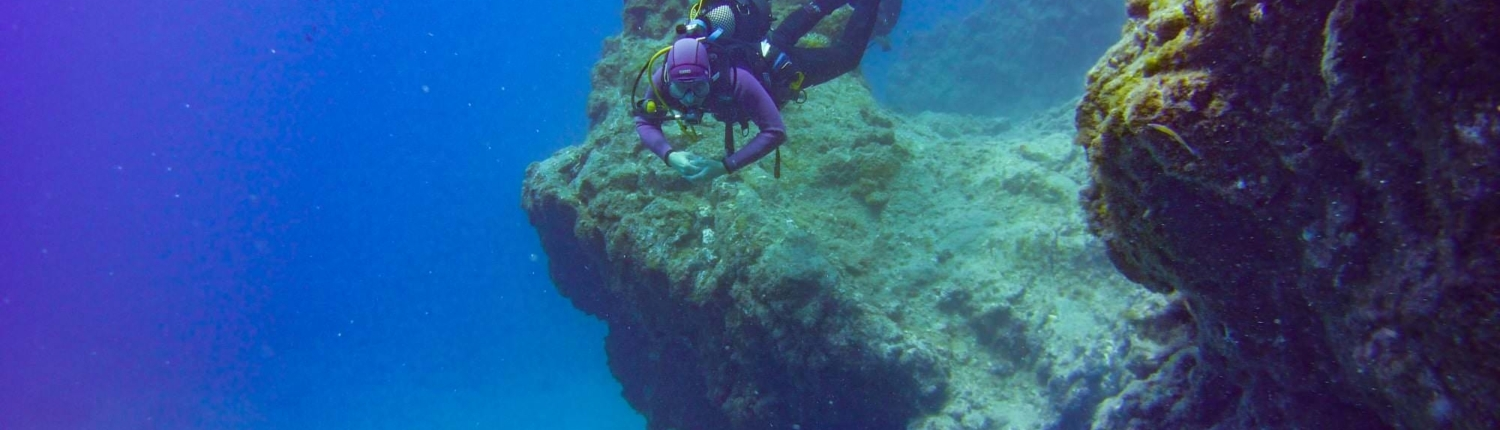 Speciality Courses Diving Tenerife